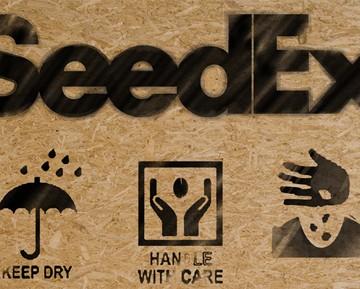 SeedEx